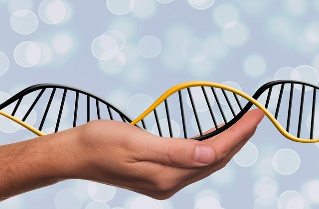 testes epigenético